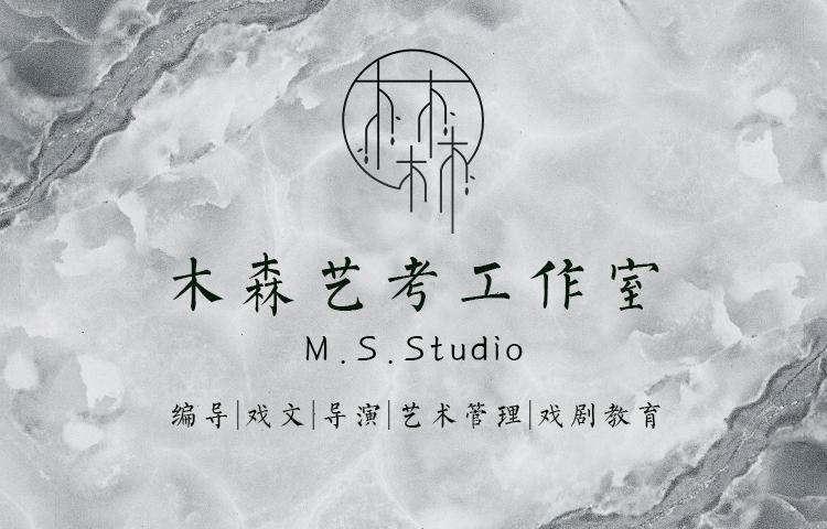 沈阳木森艺考工作室